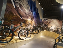 Fahrrad XXL Gruppe